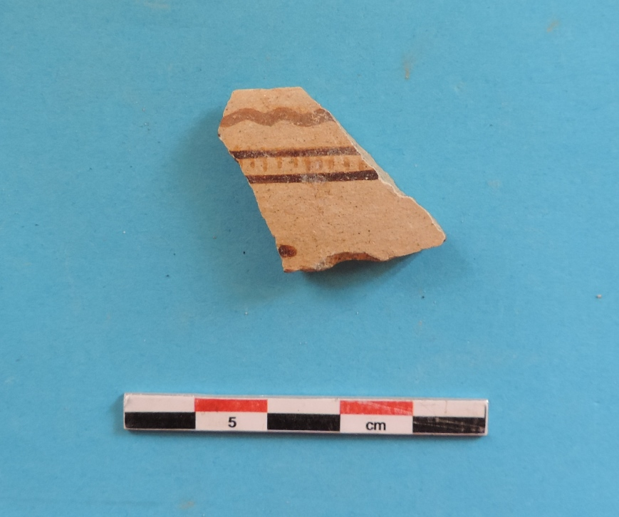 Fig. 6 - Proto-White Slip fragment from Laona