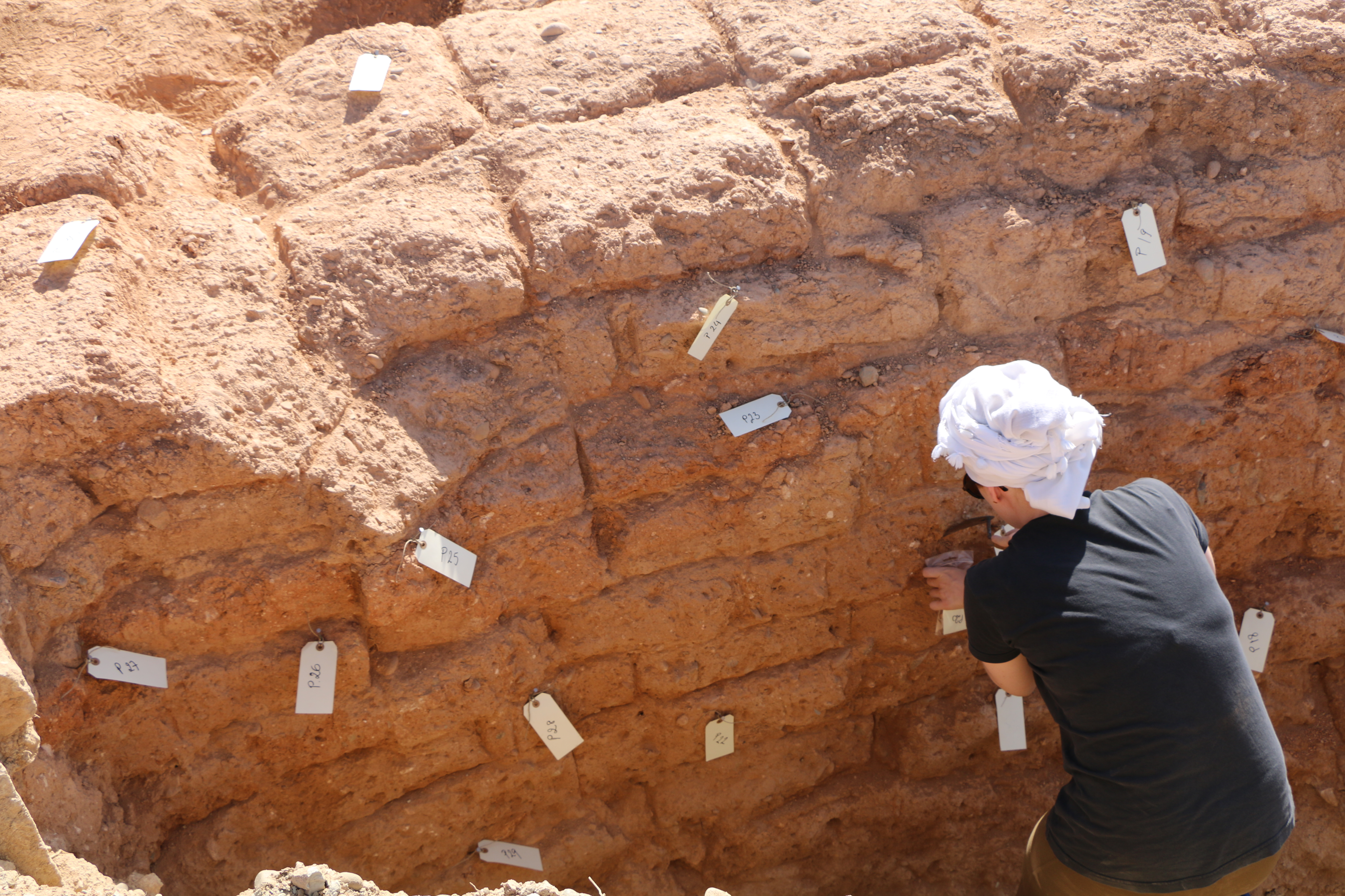 9. Marta Lorenzon taking samples of the mudrick wall from Laona